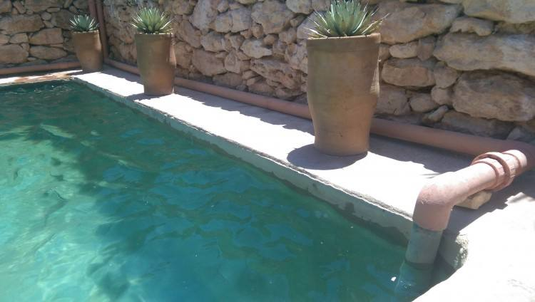 custom natural pool design ideas with slide waterfalls and landscaping  new jersey