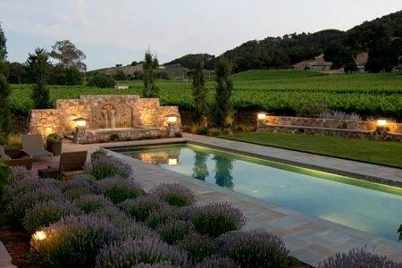 Brilliant swimming pool design