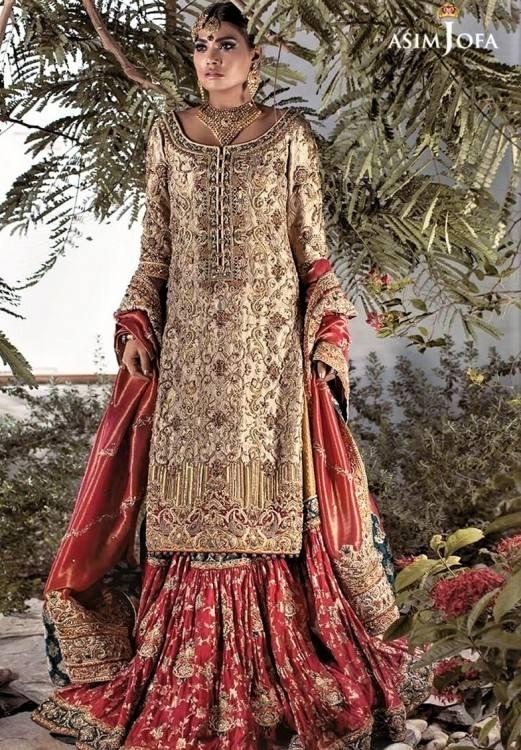   Wedding   Pakistani  bridal dresses, Pakistani bridal, Pakistani bridal wear