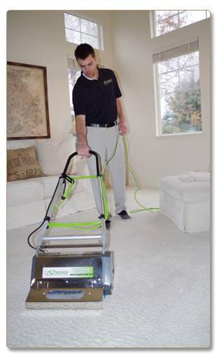 Boil  2 cups water with 1/2 cup borax add to your steam cleaner basin add your  carpet