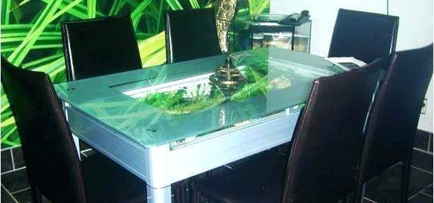 Dining Room Table Fish Tank New the Patio Cafe Beautiful Duck and Fish Pond  Next to